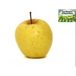 Pomme Golden  au kg
