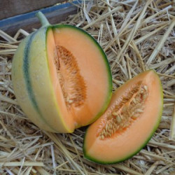 melon à la piéce