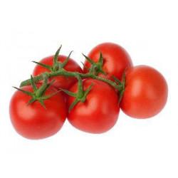 Tomate ronde au kg